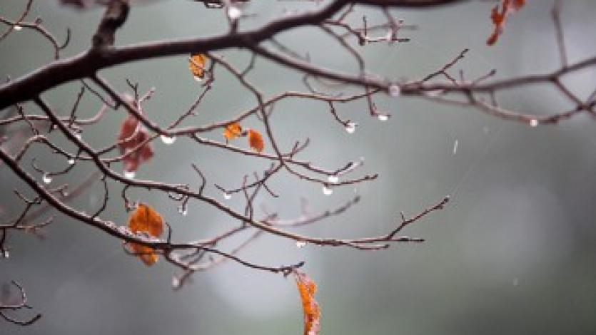 Το φθινόπωρο Προμαθηματικές ομαδοποιήσεις  (τόμπολα συνειρμού)
