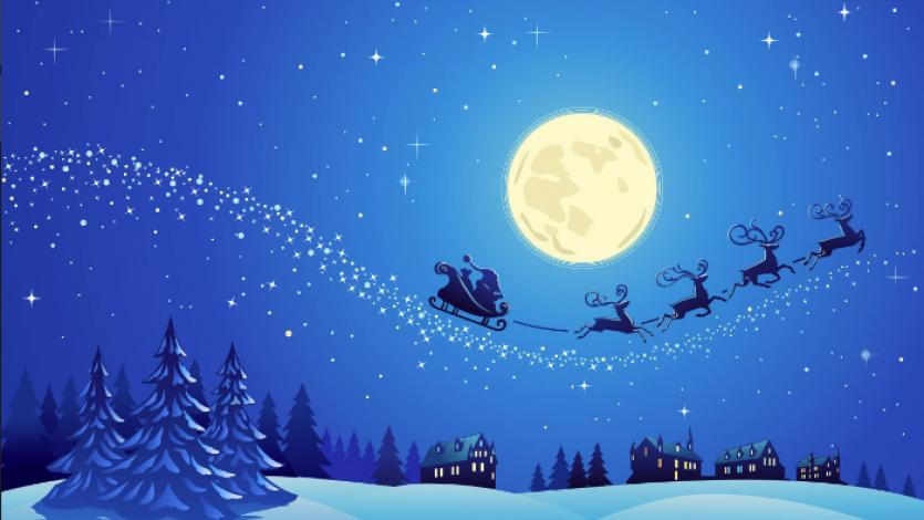 Η νύχτα των Χριστουγέννων όπως την έζησαν τα ζωάκια