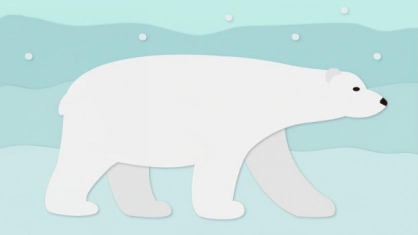 Ζωγραφίζουμε μια πολική αρκούδα;