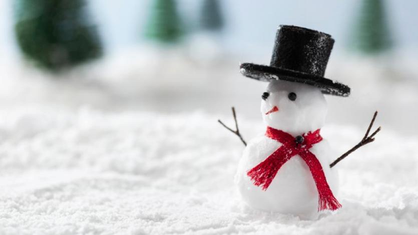 Ο χιονάνθρωπος μας